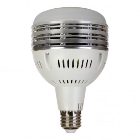 Lampe bulb de remplacement 60W